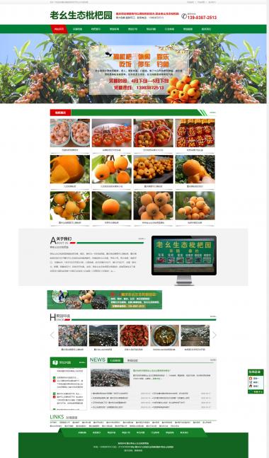 蒋老幺生态枇杷园网站建设案例