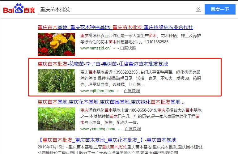 苗木行业网络推广案例